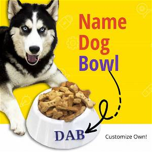 Customized Dog Name Bowl 500/1000 ML