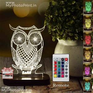 Personalized Owl Acrylic  3D illusion LED Lamp with Color Changing Led and Remote#1386