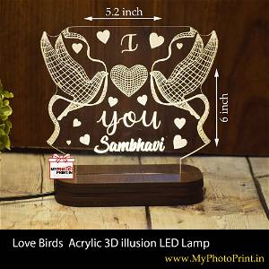 Personalized Love Birds  Acrylic 3D illusion LED Lamp with Color Changing Led and Remote#1410